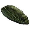 Svaja Platte Banana Leaf