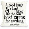 One Bella Casa Irish Proverb Cure Fleece Throw Pillow