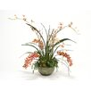 Distinctive Designs Orchid Garden in Glass Bowl without Stand