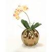 Distinctive Designs Rose Pink Cream Mini Orchid in Ball Vase (Set of 2)