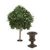 Distinctive Designs Sweet Bay Single Ball Topiary in Urn