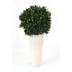 Distinctive Designs Sweet Bay Single Ball Topiary in Planter