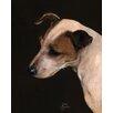 """Art Group Leinwandbild """"Jack Russel"""" von Jane Booth, Kunstdruck"""