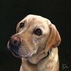 "Art Group Leinwandbild ""Labrador"" von Jane Booth, Kunstdruck"