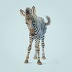 Art Group Leinwanddruck Zebra von John Butler
