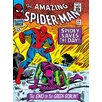 Art Group Spider-Man End of the Goblin Vintage Advertisement on Canvas