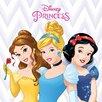 Art Group Disney Princess - Belle, Cinderella and Snow Vintage Advertisement onCanvas
