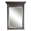 Sagehill Designs Neeson Framed Wall Mirror