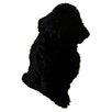 Bowron Sheepskin Long Wool Gold Star Black Area Rug