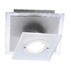 Paul Neuhaus Rotator 1-Light Flush Ceiling Light