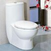 EAGO Tall Dual Flush Toilet 1 Piece
