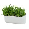 Wide-Mouth-Wide Plastic Wall Planter - Urbio Planters