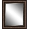 Ashton Wall Décor LLC Traditional Wood Framed Beveled Plate Glass Mirror
