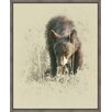 Ashton Wall Décor LLC Wildlife and Lodge 'Young Black Bear' Framed Photographic Print