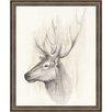 Ashton Wall Décor LLC Wildlife and Lodge 'American Wilderness III' Framed Painting Print