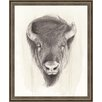 Ashton Wall Décor LLC Wildlife and Lodge 'American Wilderness II' Framed Painting Print