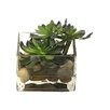 Creative Branch Faux Echeveria Desk Top Plant in Decorative Vase