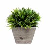 Creative Branch Faux Rye Grass Square Tapered Planter