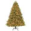 Dyno Seasonal Solutions 7.5' Green Spruce Artificial Christmas Tree with 1000 Clear Lights with Stand