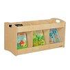 Wood Designs Natural Environment See-All Toddler Book Display