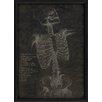 The Artwork Factory Anatomy Skeleton Front Framed Graphic Art