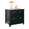 kathy ireland Home by Martin Furniture Tribeca Loft 2-Drawer Lateral File Cabinet
