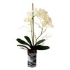 Creative Displays, Inc. Vanda Orchid in Marbled Cylinder