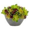 Creative Displays, Inc. Cactus Arrangement Desk Top Plant in Decorative Vase