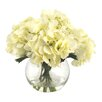 Creative Displays, Inc. Creamy White Hydrangea in Water
