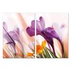Artistic Bliss Flowers 2 Piece Framed Photographic Print Set