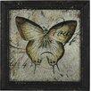 Pacific Lifestyle Gerahmter Kunstdruck Butterfly