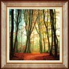 Spires Art Colour Fall by Lars Van de Goor Framed Photographic Print