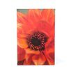 ArtWall ''Fiery Dahlia'' by Kathy Yates Canvas Photographic Print