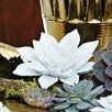 Global Views Succulent in Porcelain