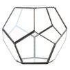Pentagon Geometric Table Glass Terrarium - Color: Black - Koyal Wholesale Planters