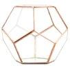 Pentagon Geometric Table Glass Terrarium - Color: Rose Gold/Copper - Koyal Wholesale Planters