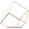 Slanted Cube Geometric Table Glass Terrarium - Color: Rose Gold/Copper - Koyal Wholesale Planters