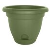 Lucca Self-Watering Plastic Pot Planter - Size: 5.25 inch High x 6 inch Wide x 6 inch Deep - Color: Living Green - Bloem Planters