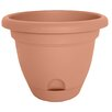 Lucca Self-Watering Plastic Pot Planter - Size: 5.25 inch High x 6 inch Wide x 6 inch Deep - Color: Terracotta - Bloem Planters