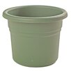 Posy Plastic Pot Planter - Size: 5.25 inch High x 6 inch Wide x 6 inch Deep - Color: Living Green - Bloem Planters