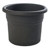 Posy Plastic Pot Planter - Color: Black - Size: 5.25 inch High x 6 inch Wide x 6 inch Deep - Bloem Planters