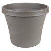 Felker Resin Pot Planter - Size: 3.63 inch High x 4.25 inch Wide x 4.25 inch Deep - Color: Peppercorn - Charlton Home Planters