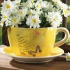 Novelty Dolomite Pot Planter with Saucer - Zingz & Thingz Planters