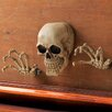 Zingz & Thingz Skeleton Wall Décor