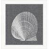 Melissa Van Hise White Shell lll Framed Graphic Art