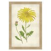 Melissa Van Hise Botanical Studies II Framed Graphic Art