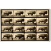 Oliver Gal Canyon Gallery Buffalo in Motion Photographic Print on Wrapped Canvas