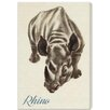 """Oliver Gal """"Rhino"""" by Olivia's Easel Canvas Art"""