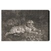 "Oliver Gal The Art Cabinet G Stubbs - A Tiger Sleeping and a Leopard 1788 by Olivia""s Easel Canvas Art"