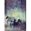 """Oliver Gal """"Horses in the Wild"""" by Canyon Gallery Graphic Art on Wrapped Canvas"""